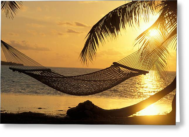Hammock At Sunset Greeting Card by Panoramic Images