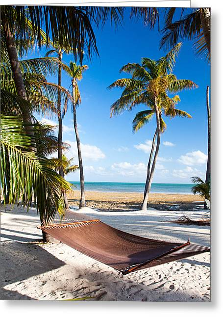 Hammock In Paradise Greeting Card by Adam Pender