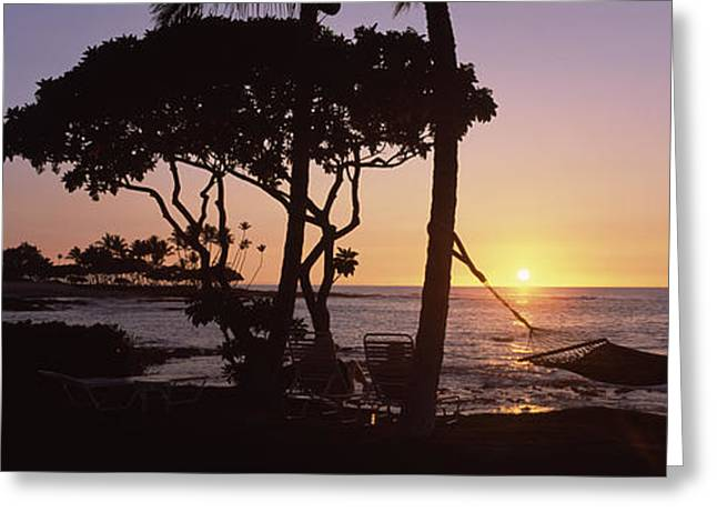 Hammock On The Beach At Sunset Greeting Card by Panoramic Images