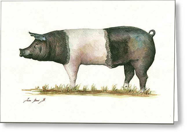 Hampshire Pig Greeting Card by Juan Bosco