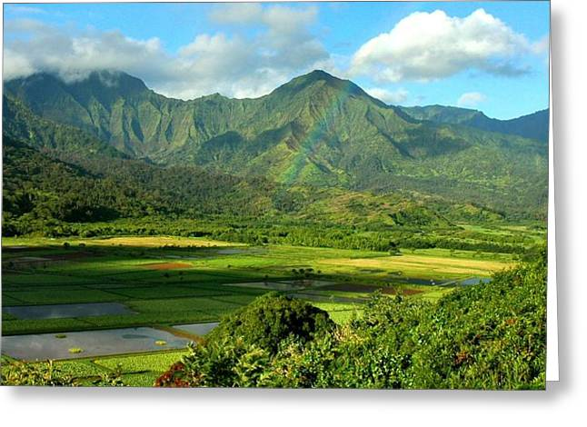 Hanalei Valley Rainbow Greeting Card by Stephen Vecchiotti