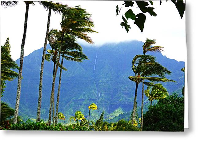 Kevin Smith Greeting Cards - Hanalei Waterfalls Kauai Greeting Card by Kevin Smith