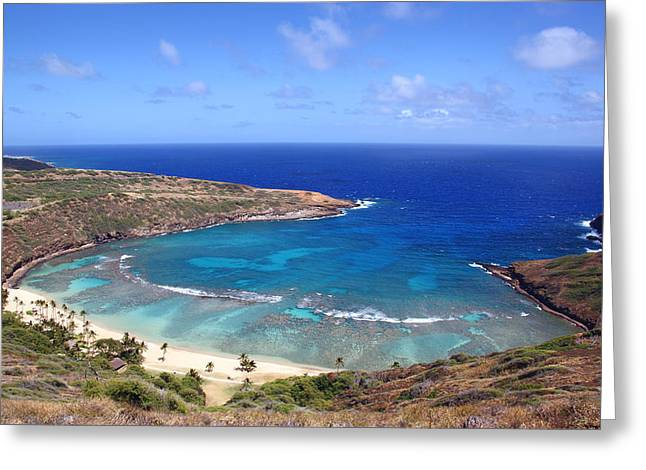 Recently Sold -  - Snorkel Greeting Cards - Hanauma Bay Underwater Park Greeting Card by Kevin Smith