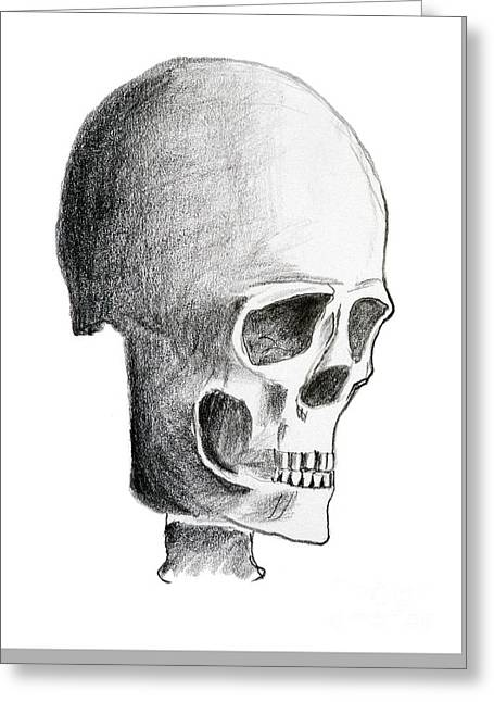 Hand Drawing Of The Skull - Pencil On Paper Greeting Card by Michal Boubin