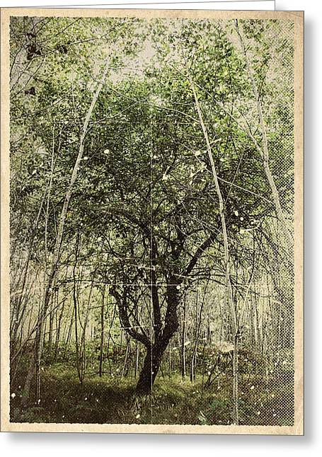 Hand Of God Apple Tree Poster Greeting Card
