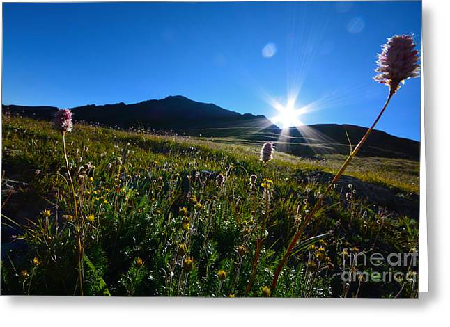 Greeting Card featuring the photograph Handies Peak Sunrise by Kate Avery
