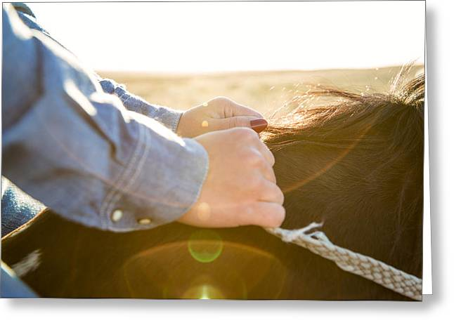 Hands On The Reins Greeting Card by Todd Klassy