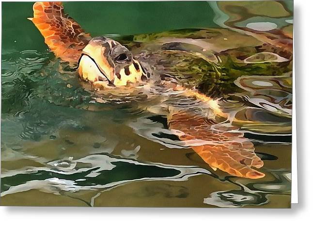 Hands Up For A Plastic Free Ocean Loggerhead Turtle Greeting Card