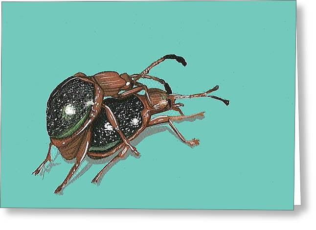 Greeting Card featuring the painting Handsome Fungus Beetles by Jude Labuszewski