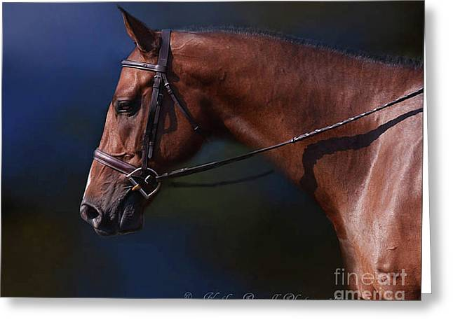 Handsome Profile Greeting Card by Kathy Russell