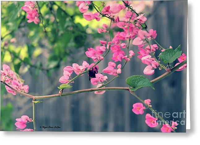 Greeting Card featuring the photograph Hang On by Megan Dirsa-DuBois