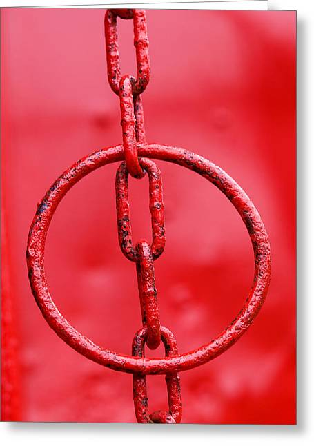 Hanging Around Greeting Card by Paul Wear