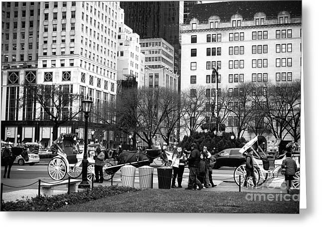 Hanging At The Grand Army Plaza Greeting Card by John Rizzuto