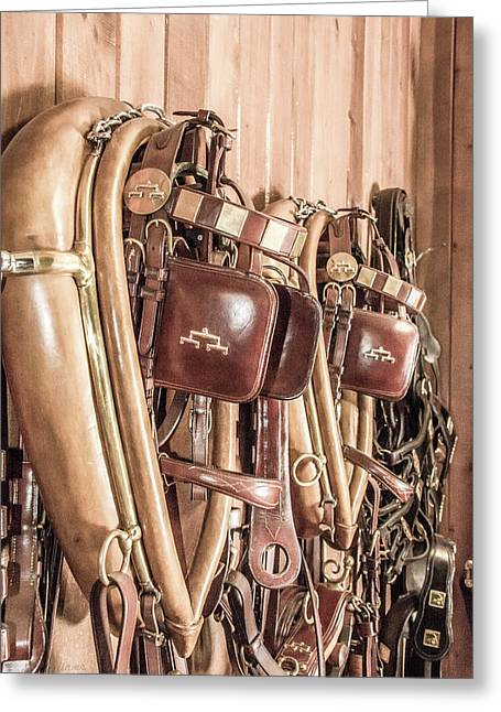 Hanging Bridles Greeting Card