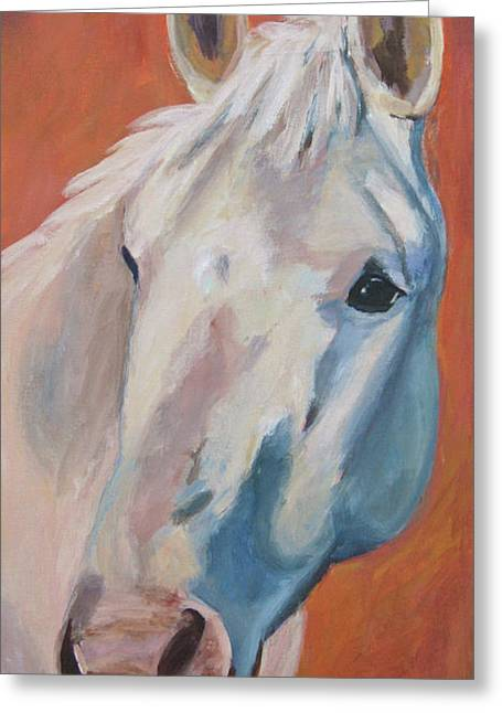 Equine Artist Greeting Cards - Hannocka Greeting Card by Anne West