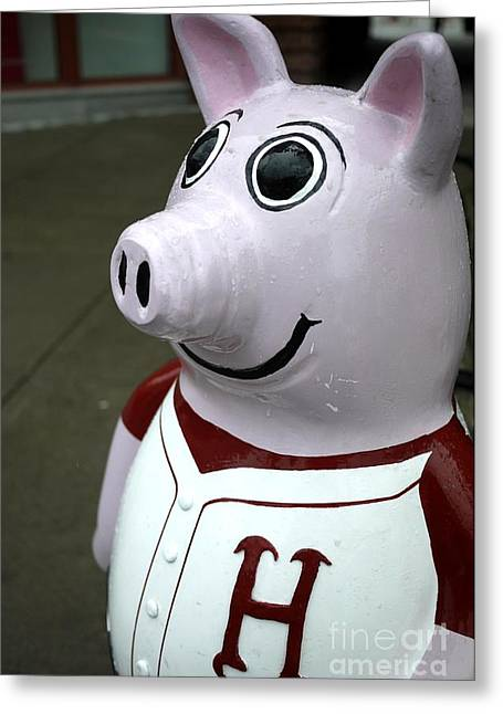 Hanover High Pig Greeting Card by Edward Fielding