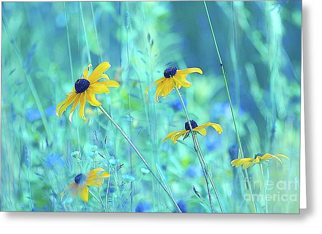 Happiness Is In The Meadows - A111 Greeting Card