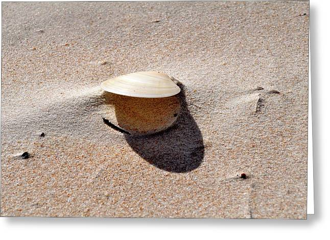 Happy As A Clam Greeting Card by Laura Ogrodnik