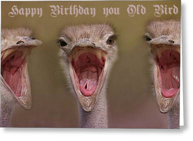 Happy Birthday Greeting Card by Dennis Baswell