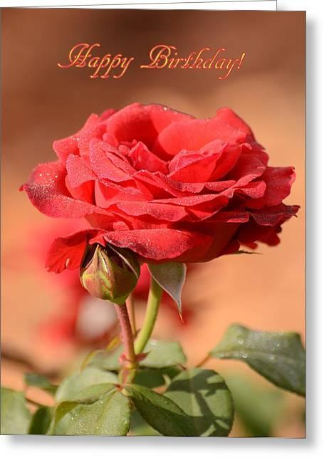 Happy Birthday Rose Greeting Card by Zina Stromberg