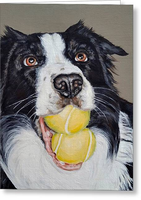 Happy Border Collie Greeting Card by Pamela Post