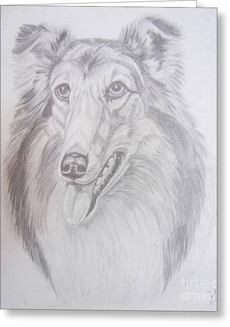 Happy Collie Greeting Card