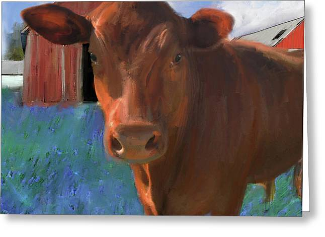 Happy Cow West Marin  Greeting Card