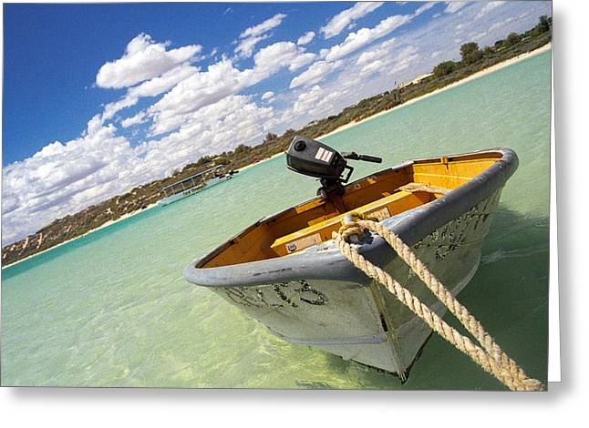 Greeting Card featuring the photograph Happy Dinghy by T Brian Jones