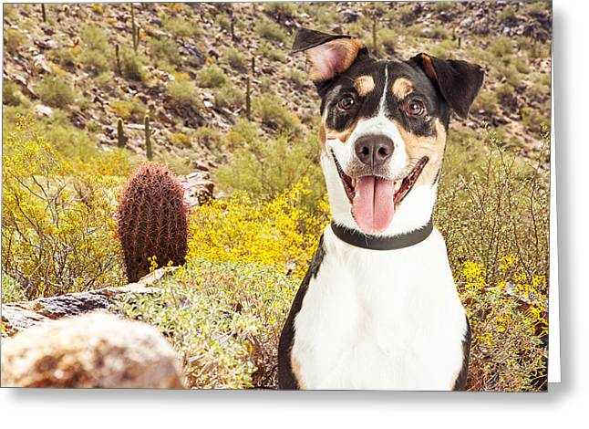 Happy Dog Hiking In Arizona Desert Greeting Card