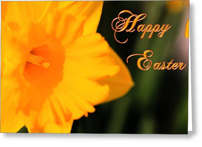 Greeting Card featuring the photograph Happy Easter Yellow Daffodil Spring Flowers by Shelley Neff