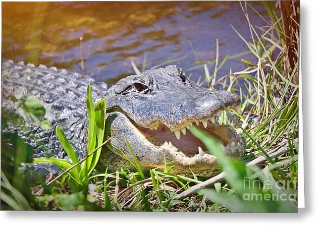 Happy Gator 2 Greeting Card