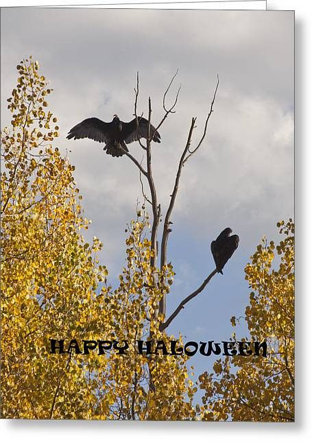 Greeting Card featuring the photograph Happy Halloween by Daniel Hebard