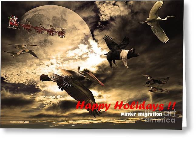 Flying Pig Greeting Cards - Happy Holidays . Winter Migration Greeting Card by Wingsdomain Art and Photography