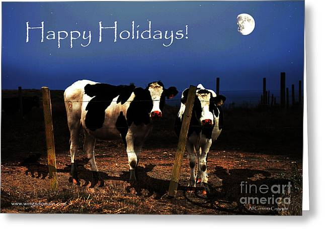 Happy Holidays . Witness Greeting Card by Wingsdomain Art and Photography