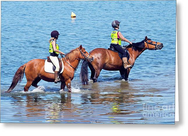 Happy Horses And Their Riders Greeting Card by Terri Waters