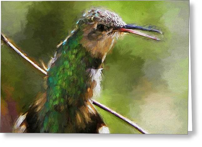 Happy Hummingbird Greeting Card