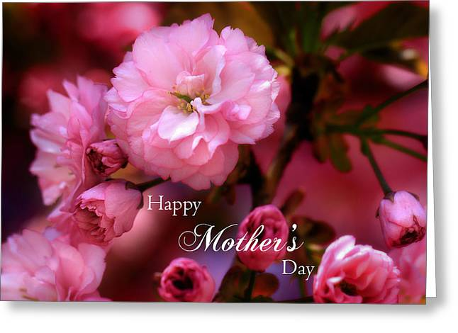 Greeting Card featuring the photograph Happy Mothers Day Spring Pink Cherry Blossoms by Shelley Neff
