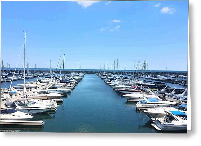 Harbor Life Greeting Card