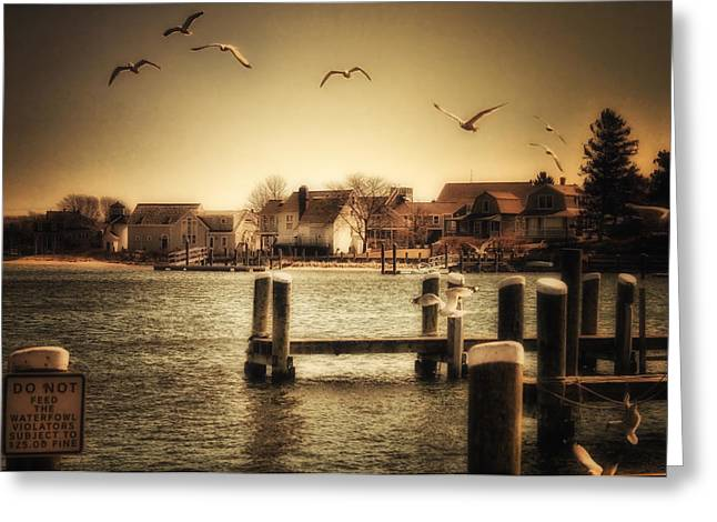 Harbor View Greeting Card by Gina Cormier