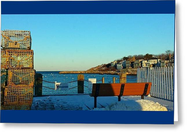 Harbor View In Winter Greeting Card by Harriet Harding