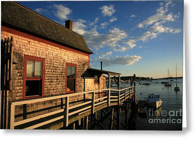 Harbor View Greeting Card by Timothy Johnson