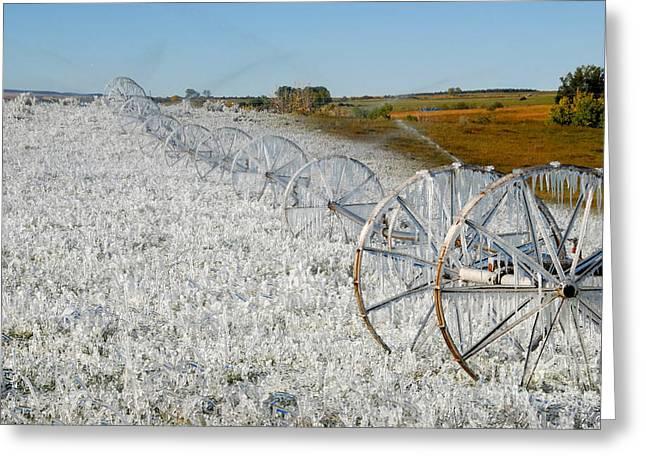 Hard Land Farming Greeting Card by David Lee Thompson