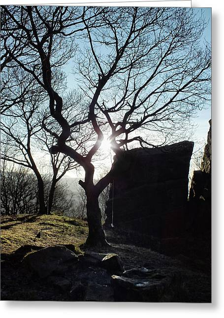 Hard Light Greeting Card by Philip Openshaw