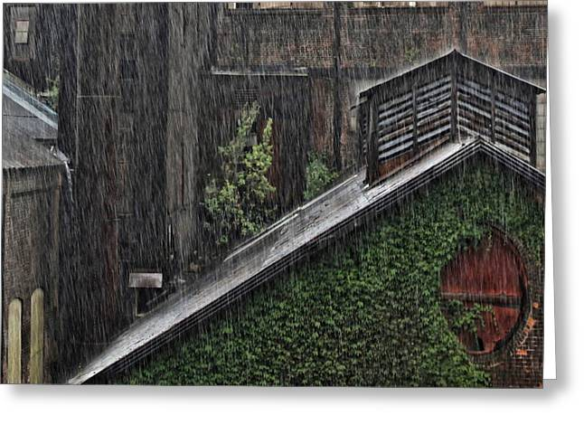 Hard Rain Greeting Card
