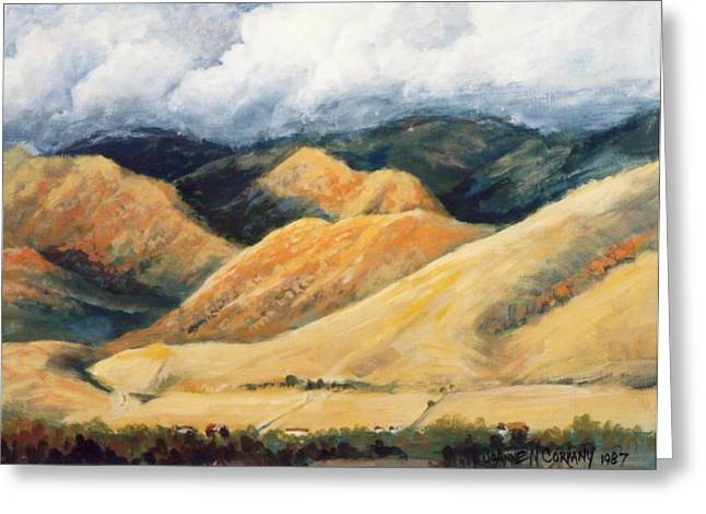 Hardscrabble Canyon Greeting Card by JoAnne Corpany
