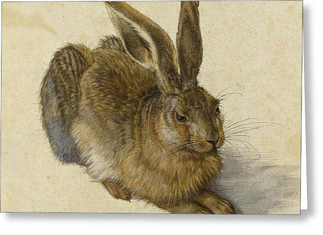 Hare 1502 Greeting Card by Albrecht Durer