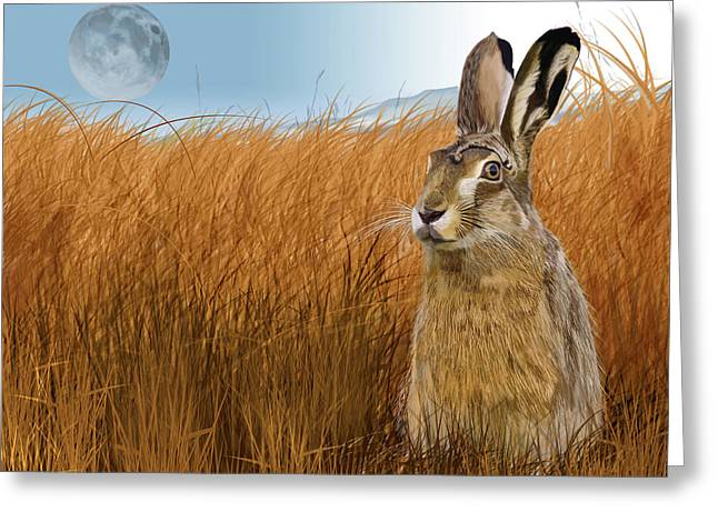 Hare In Grasslands Greeting Card