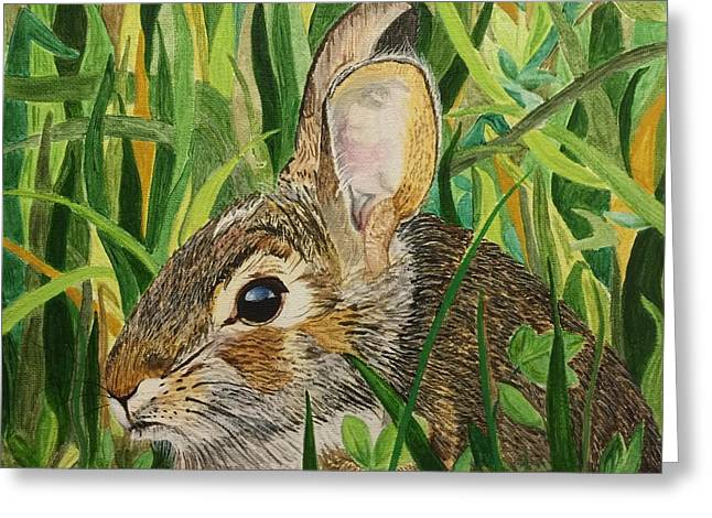 Hare's Breath Greeting Card