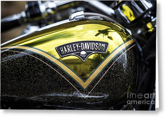 Harley Gold Greeting Card by Tim Gainey