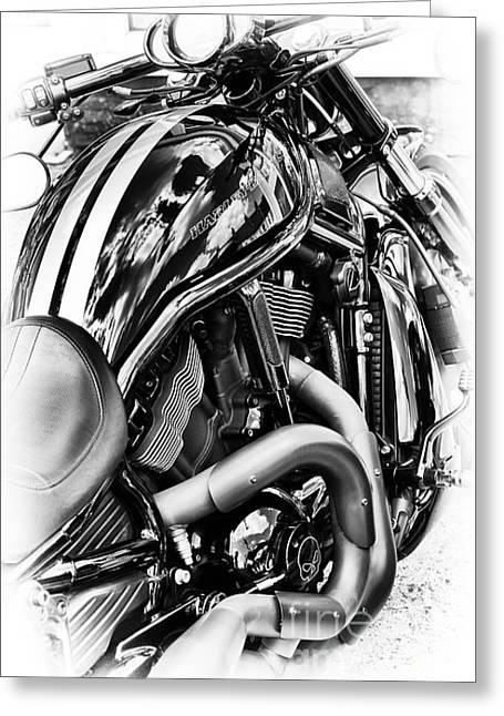 Harley Night Rod Greeting Card by Tim Gainey